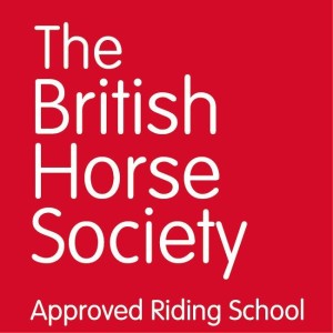 BHS Approved Riding School logo