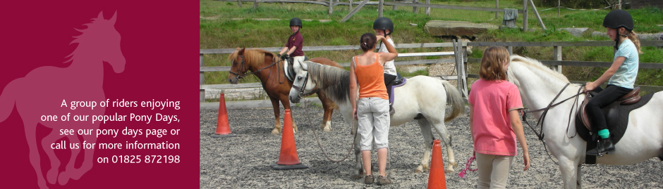 Pony Days at Glebe Field Riding School